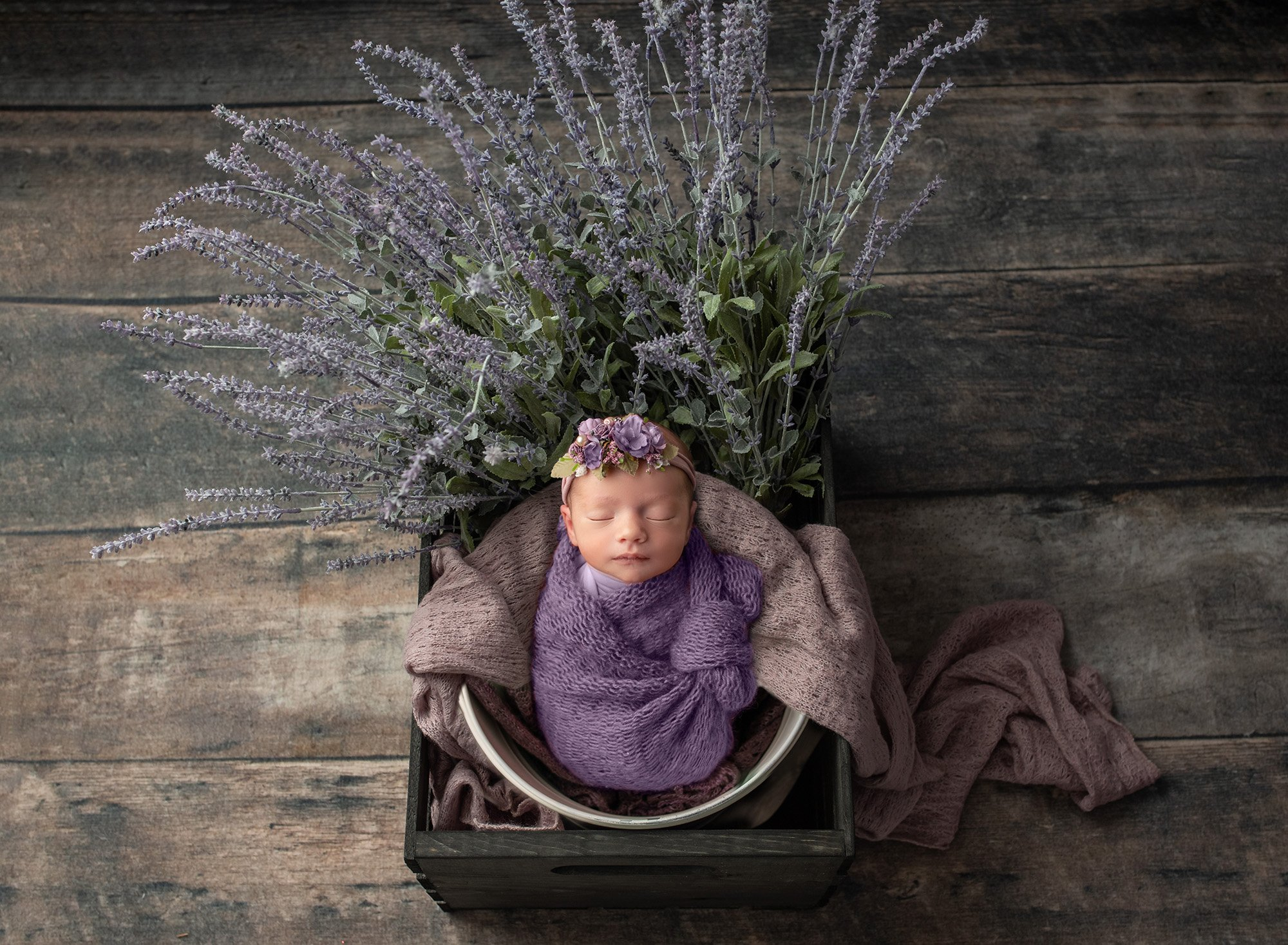 newborn baby girl swaddled in purple asleep in bucket with lots of lavender on wooden background